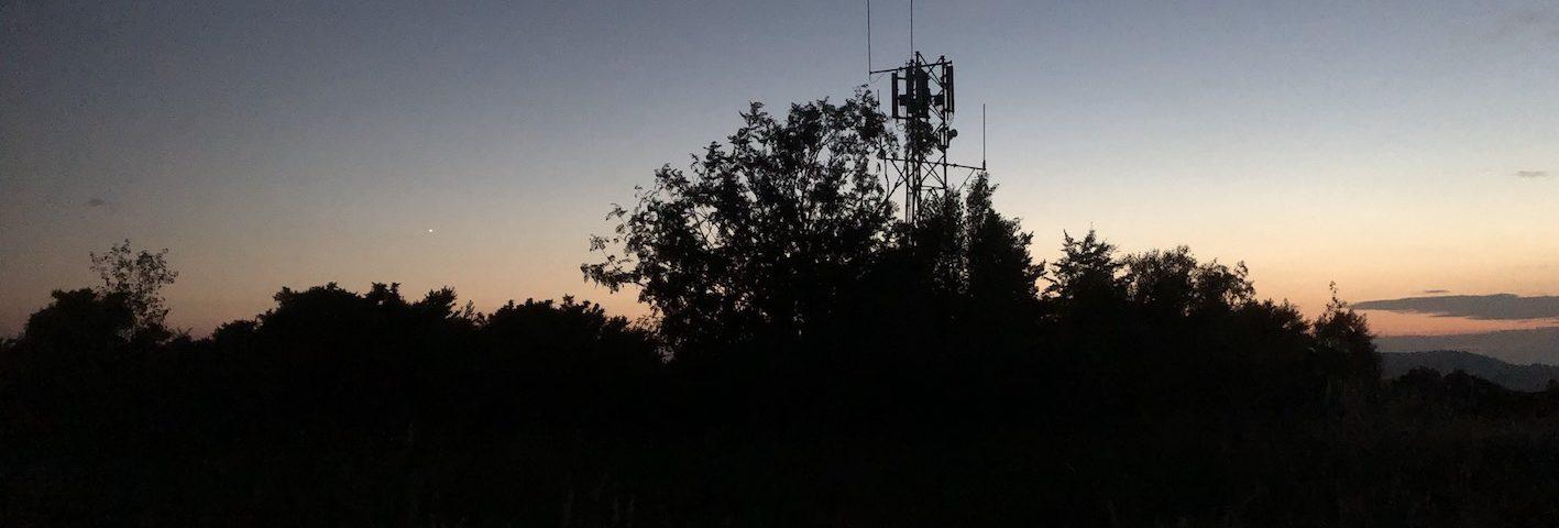 Nightjar mobile phone mast